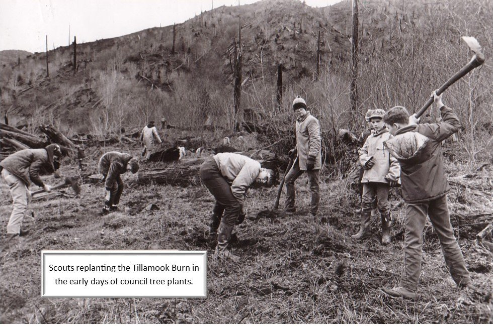 boy scouts replanting the burn